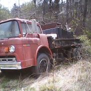 1975 Ford 8000