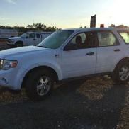 2010 Ford Escape 4-Door Sport Utility Vehicle (124991)