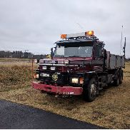 SCANIA T113HL dump truck for sale by auction