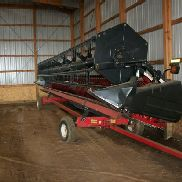 2010 Case IH 1020 30' Flex Bean Head