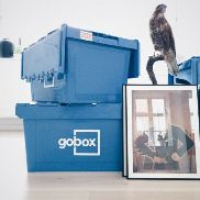 Liquidation item: 5 x Gobox stacking and container boxes. Free shipping