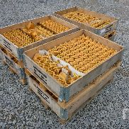 UNUSED Quantity Of Titan Drill Bits Drilling Equipment - Other