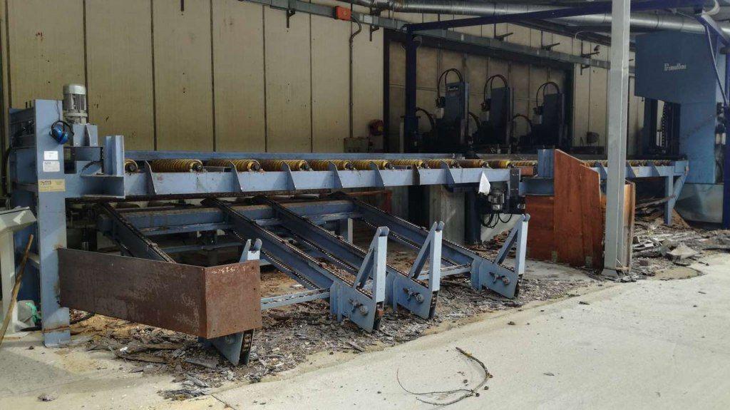 Holzspalter / Sizer Plant