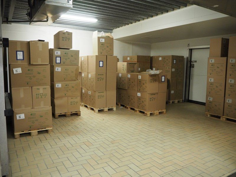 Kombination: Große Menge an Tabletts der ES-Plastic GmbH