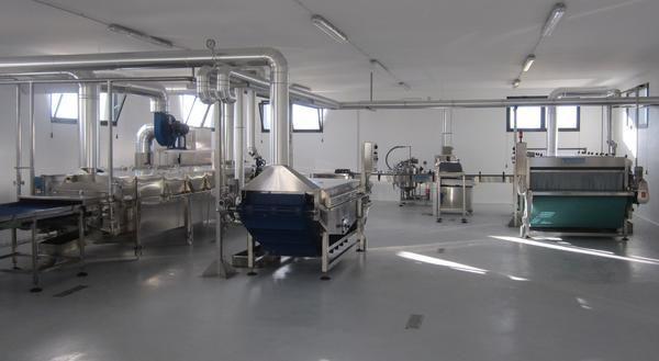 Gemüseverarbeitungsanlage mit Tecnoceam-Maschinen