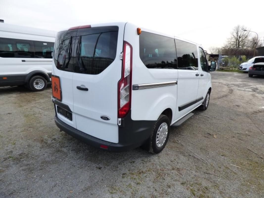 Minibus ( amtl. Kennz. GE - LB 3038)