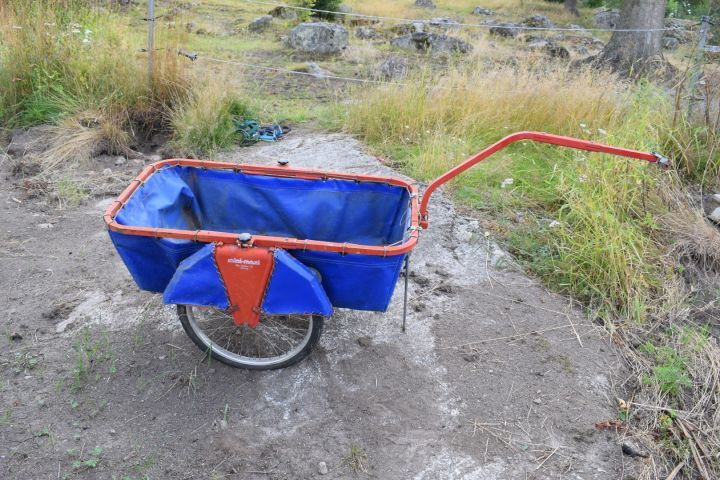Gartenwagen - Setzlinge, Äpfel, Blätter etc.