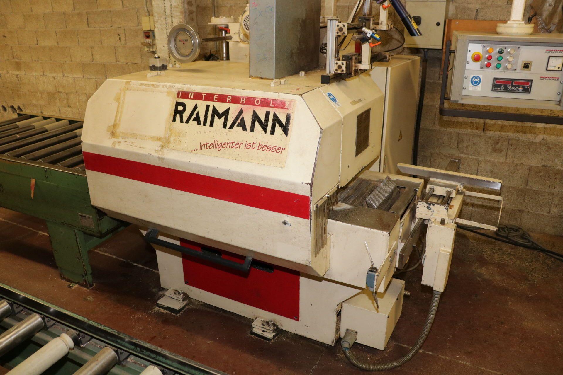 RAIMANN KS310BV Mehrblattsäge