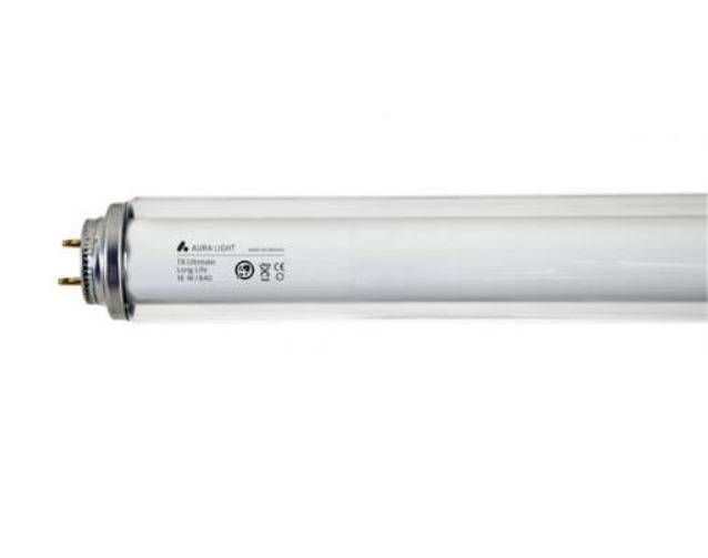 Leuchtstofflampe T8